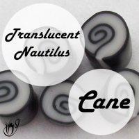 Polymer clay translucent nautilus cane