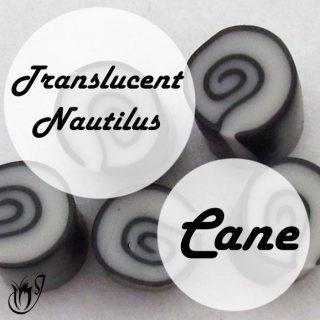 Translucent Polymer Clay Nautilus Cane